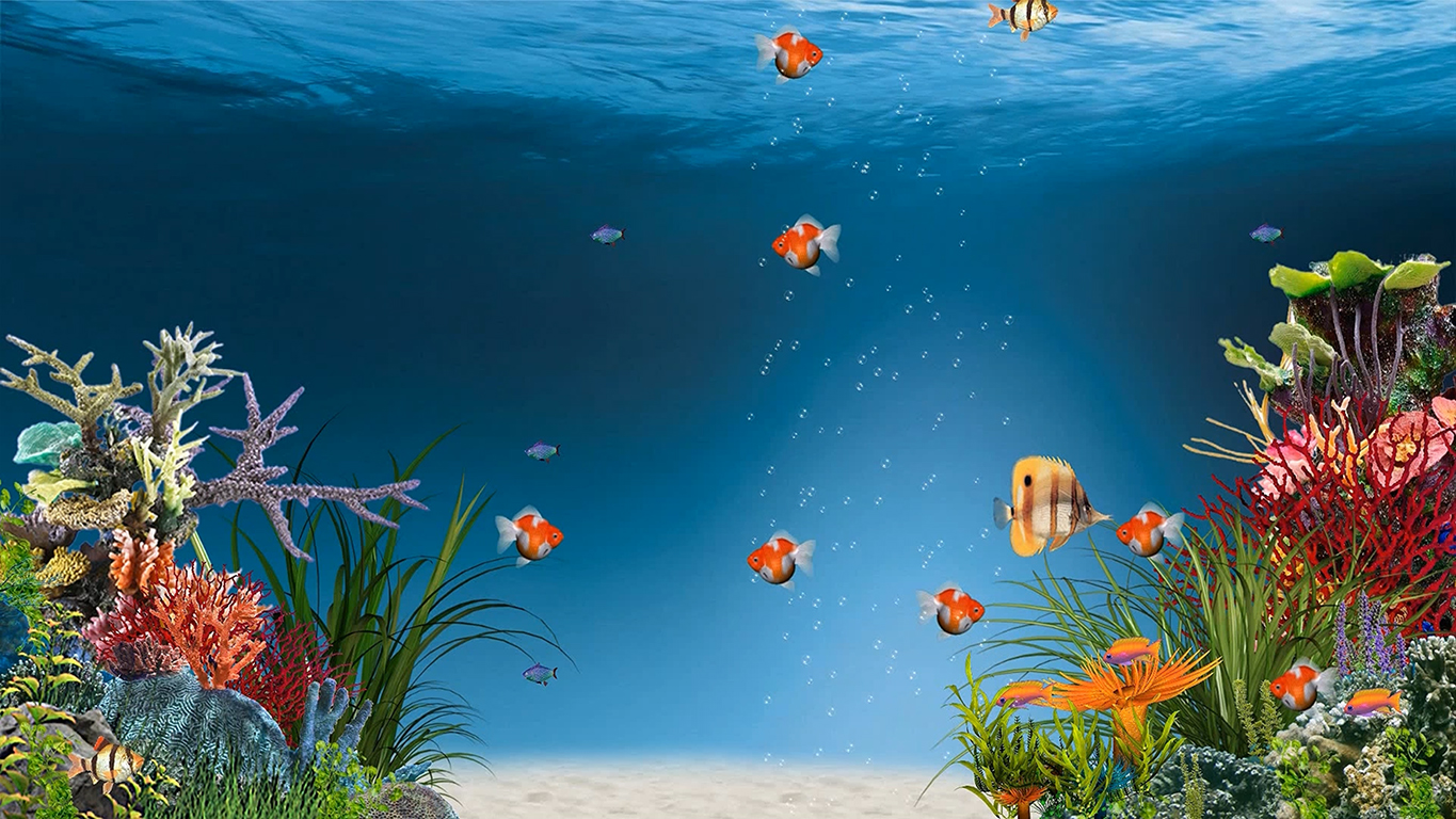 Aquarium  ( RainWallpaper )