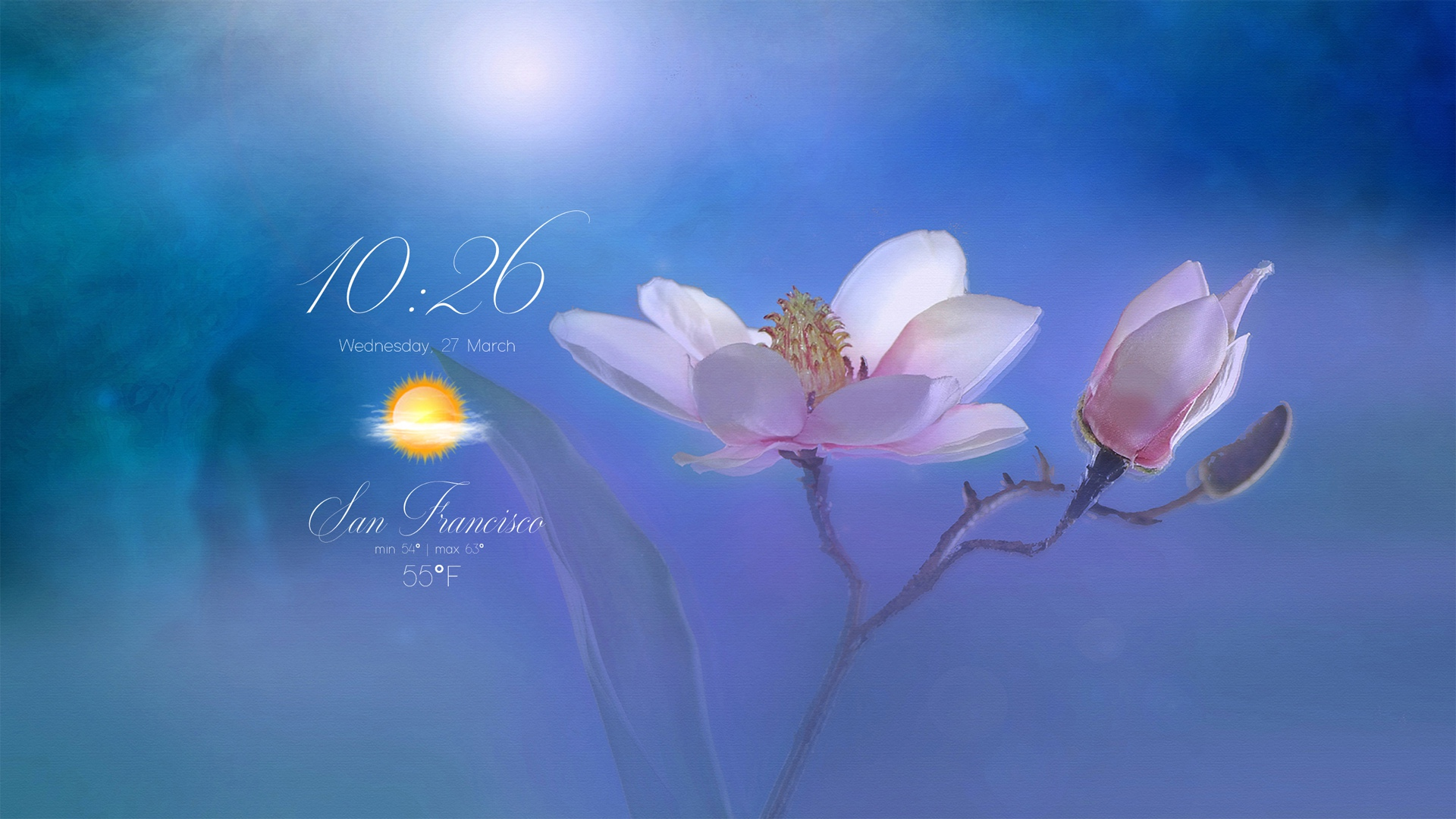 FLOWER-A18 ( RainWallpaper )